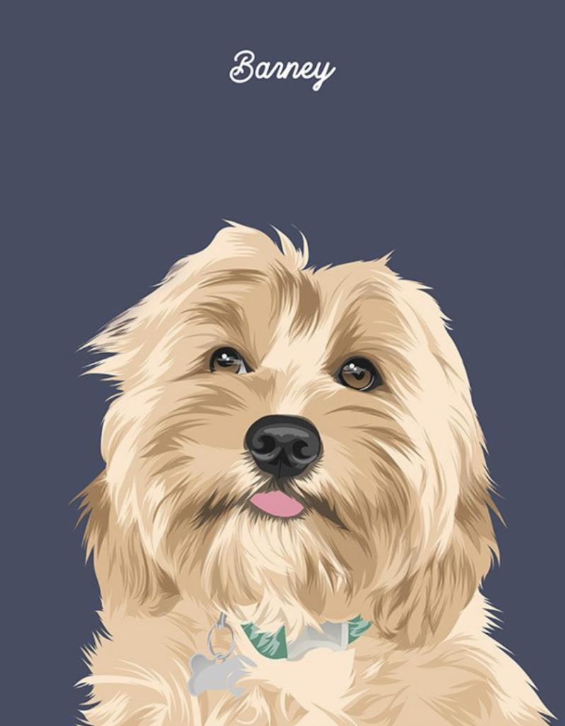 framing trend pet portrait illustration framed trends