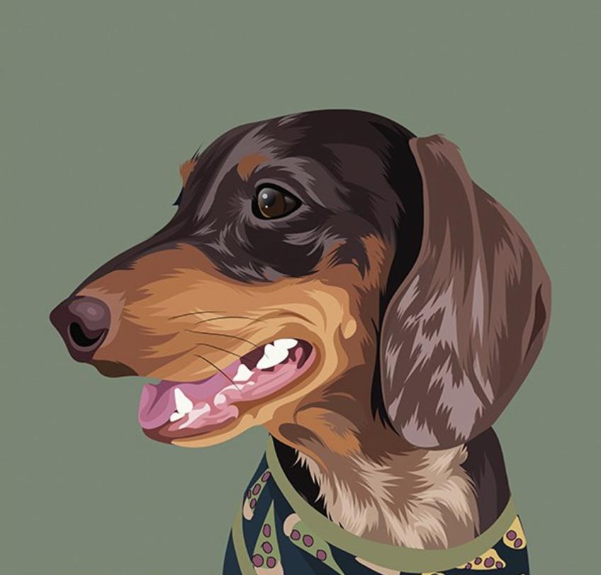 pet portrait drawing framed trends