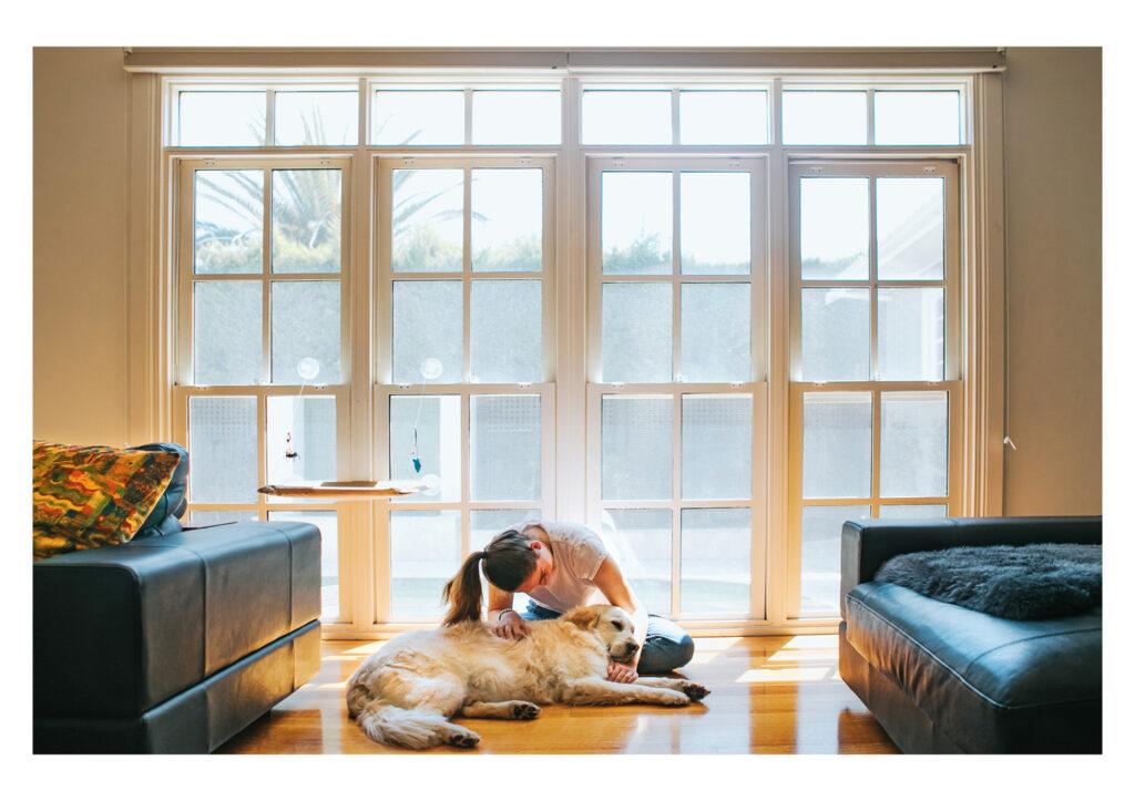 Pet Photography lighting tips dog folk Framefox
