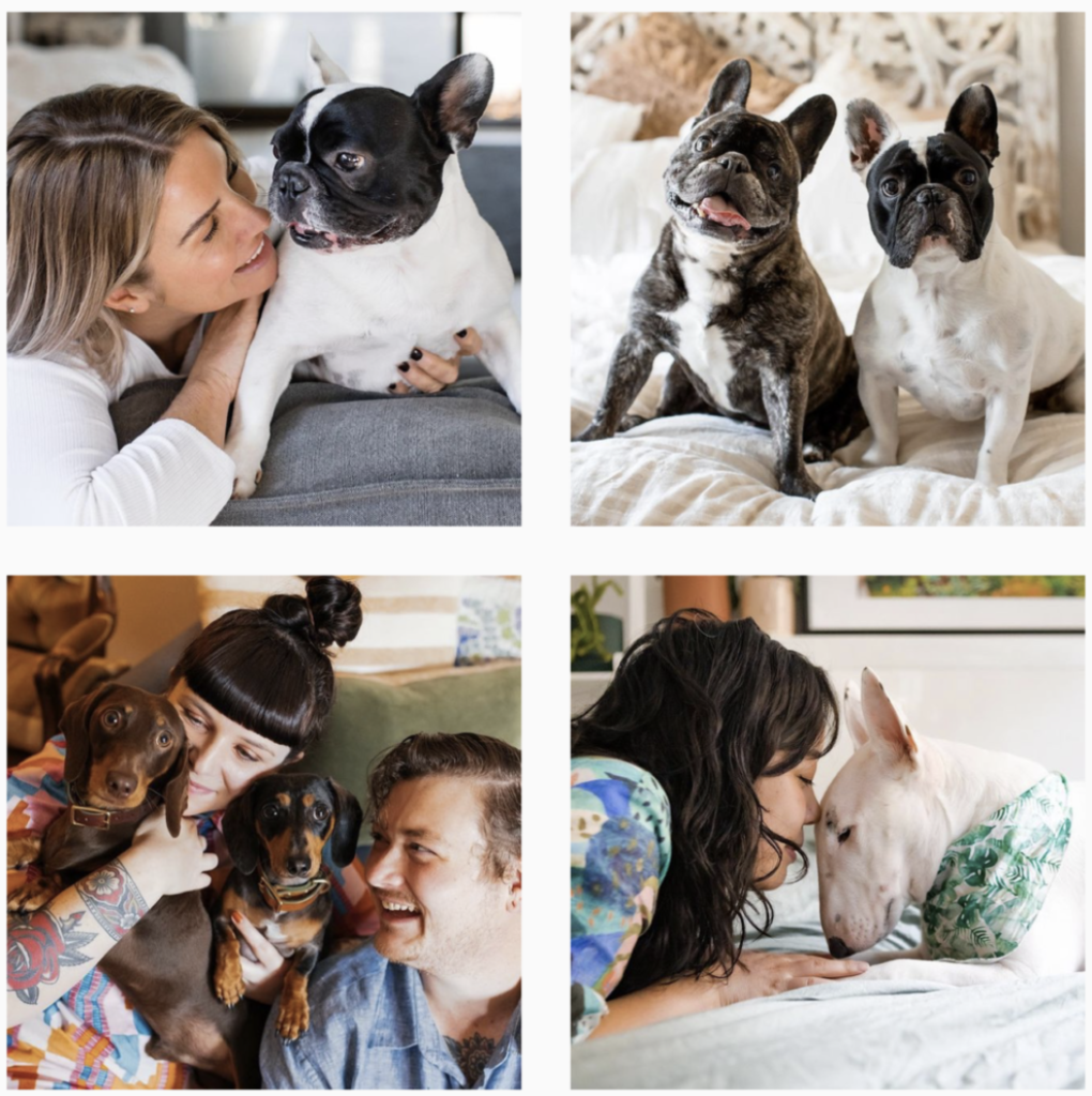 Image credit: Dogfolk Instagram Australia