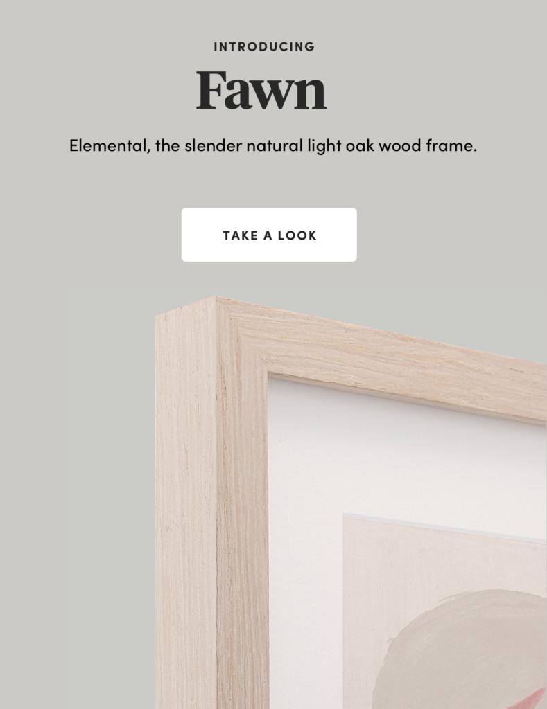 Fear light oak new frame