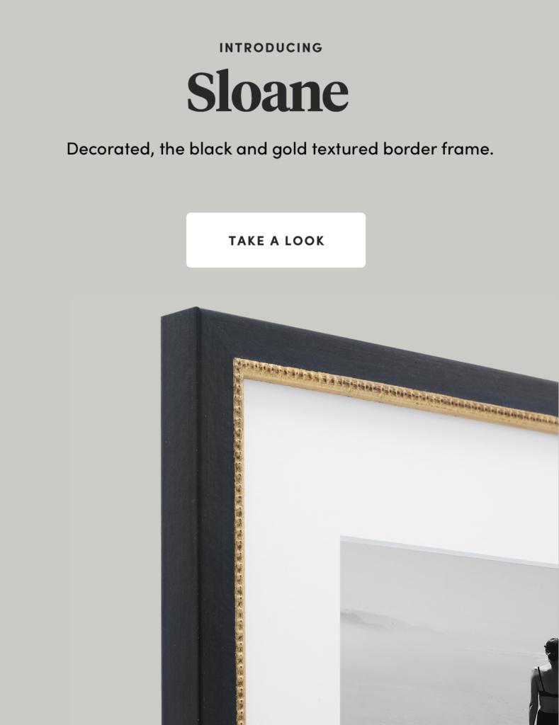 Sloane New black and gold frame